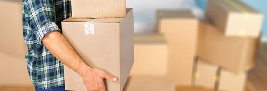 Cartons de stockage